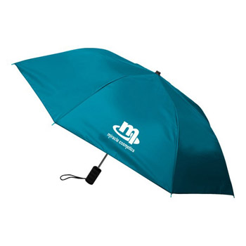 Economy Auto Open Folding Umbrella